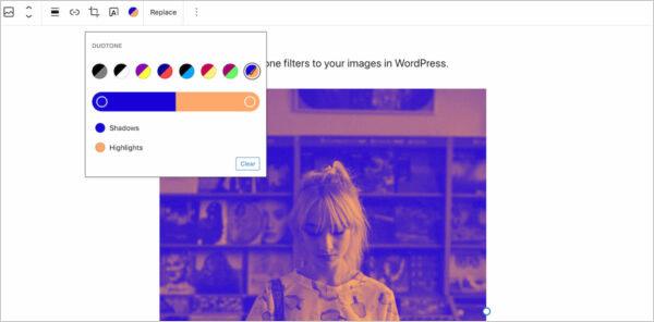 WordPress 5 8 New Features