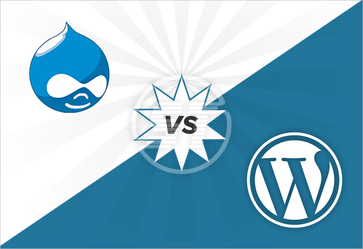 drupal wordpress development